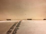 Manuscript waste tp web